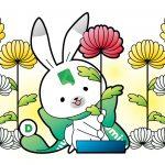 北海道の「芸術の秋」は菊と演劇!11月のおすすめイベント2選!