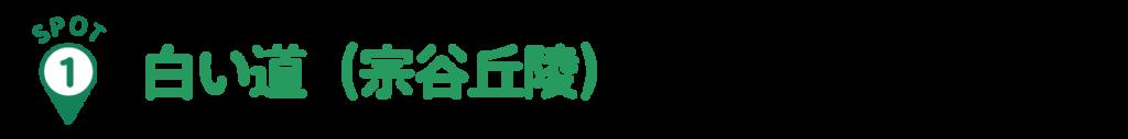 spot1:白い道(宗谷丘陵)