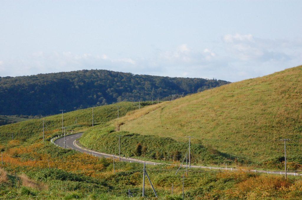 大規模草地牧場写真
