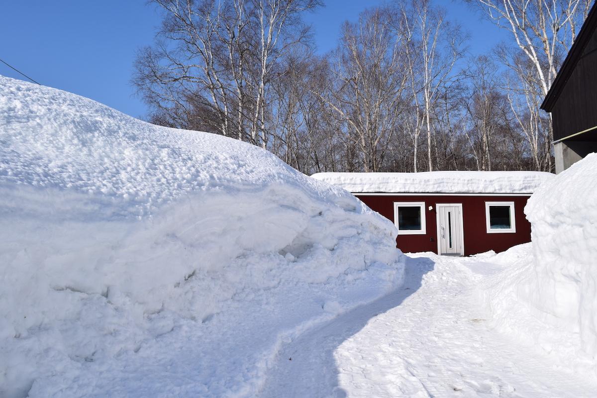 沼田の積雪
