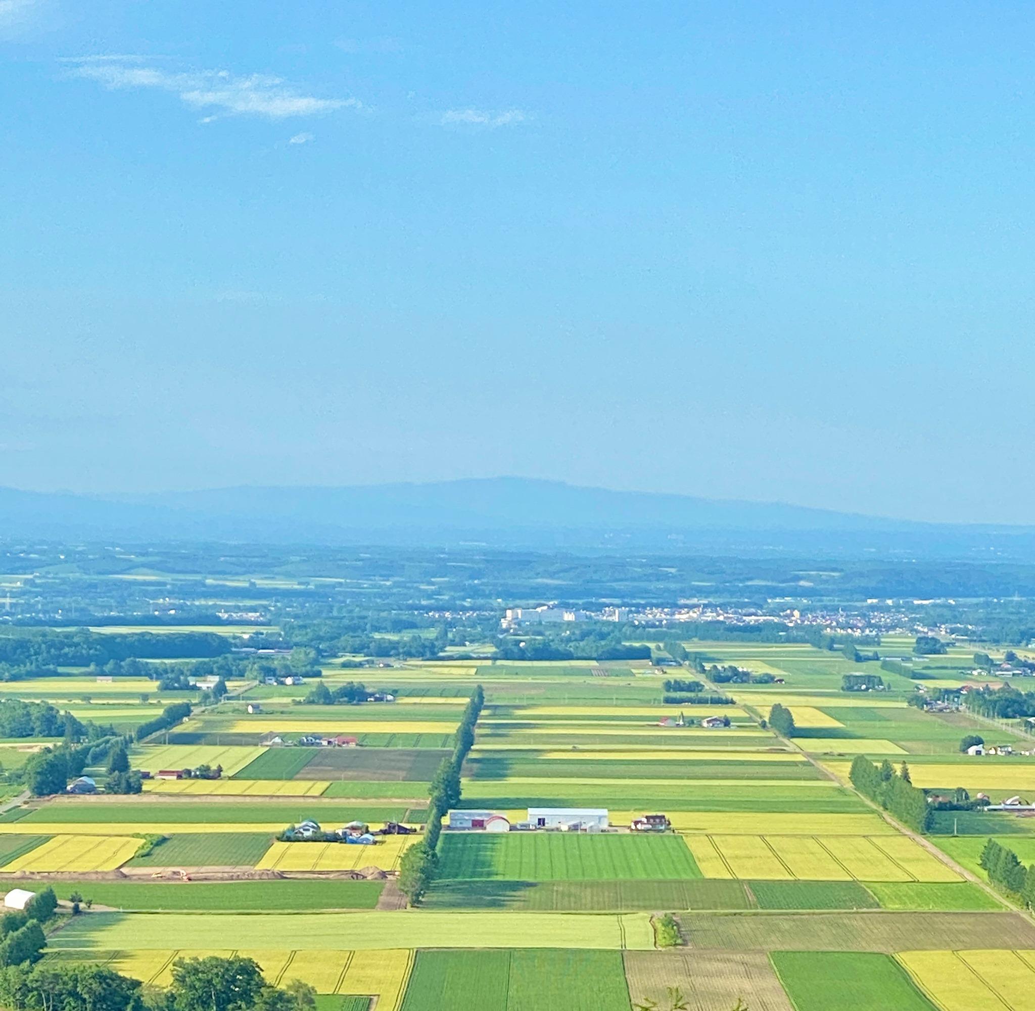 1_芽室町の畑作風景