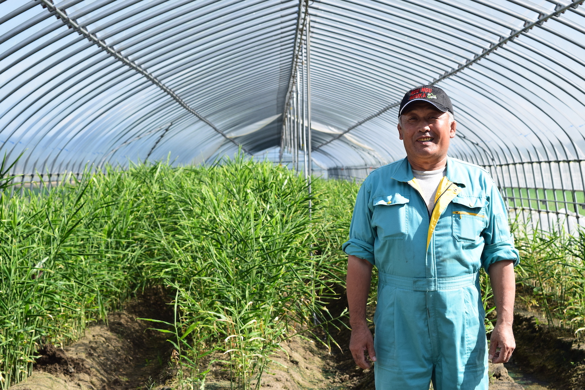 吉田農場の吉田寿栄さん